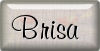 tutorial Brisa