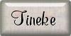 tutorial Tineke